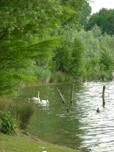 Vassacher See bei Villach