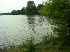 Urbansee